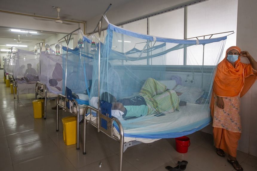 Patients covered with mosquito nets receive treatment for dengue at the Sir Salimullah Medical College Hospital in Dhaka on Sept 14, 2021.