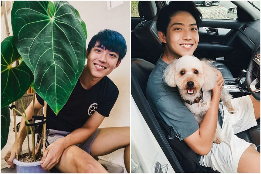 Benjamin Tan likes to tend to his plants and wants to spend more time with his dog, Toki.