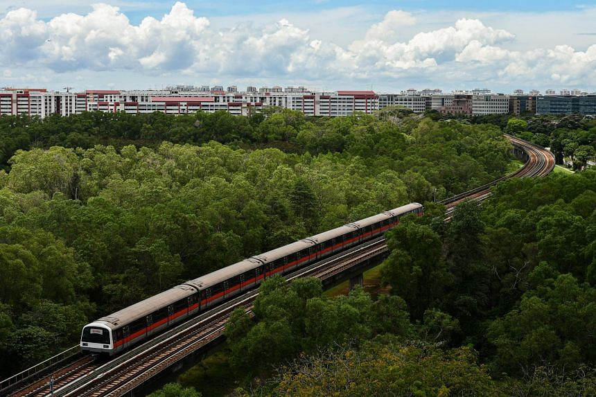 Singapore's Government said the Climate Action Tracker analysis does not account for constraints faced by the country in its decarbonisation journey.