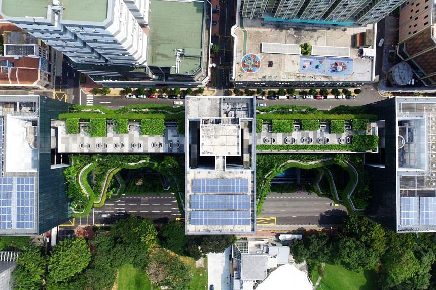 Solar panels in Singapore