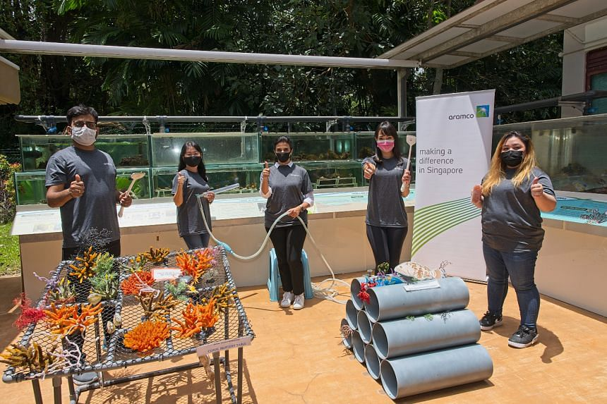 \Aramco Singapore volunteers performed coral husbandry work at the Marine Park Outreach and Education Centre on Sept 8, 2021.