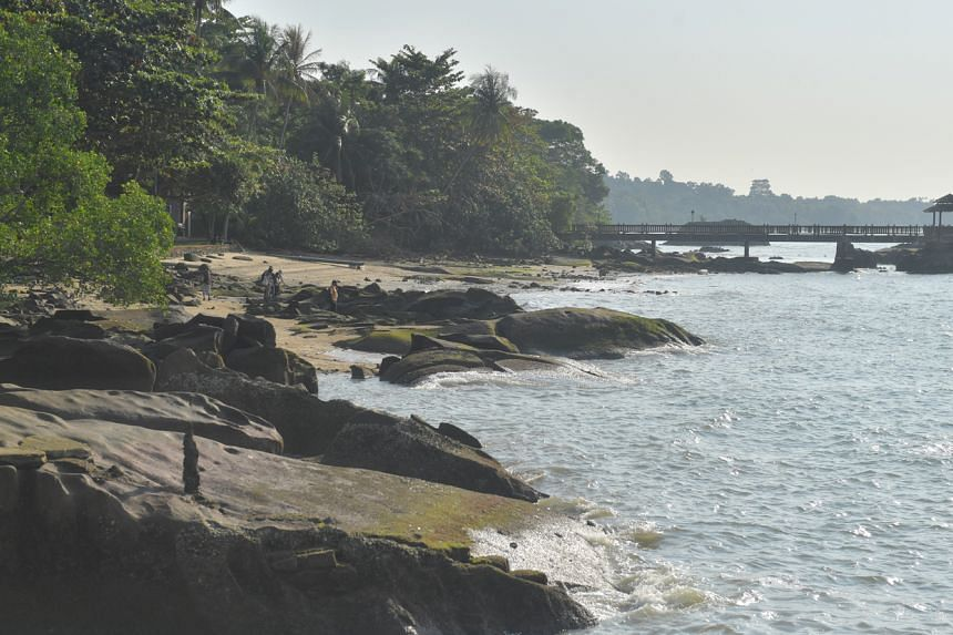 Ubin's northern coastline is currently facing erosion, wrought by changes in land use on the island and the impacts of waves and vessel traffic.