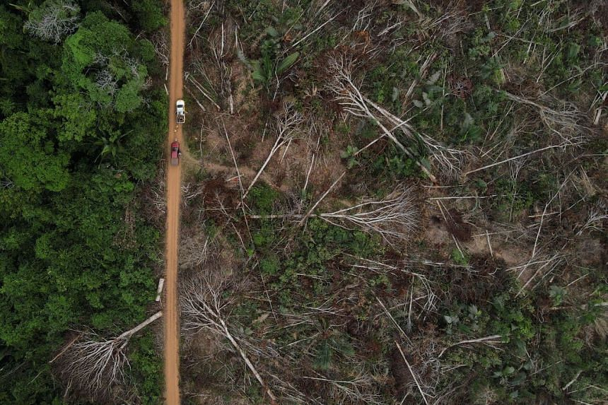 This aerial photo taken on Sept 4, 2021 shows a deforested plot of the Amazon rainforest in Apui, Amazonas state.