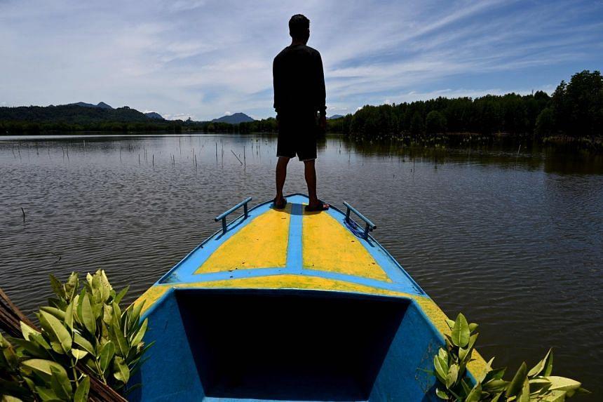 indonesian-mangroves