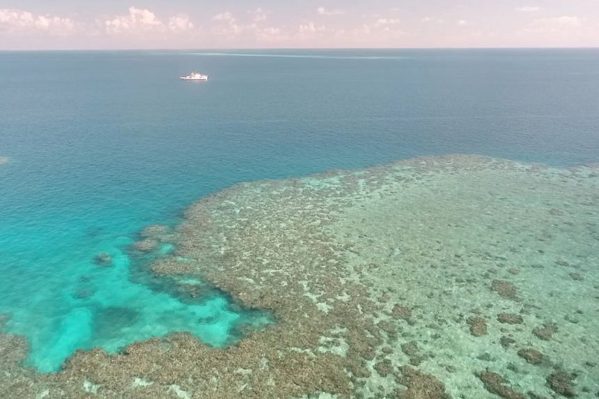 The Great Barrier Reef came close to being listed as an endangered World Heritage Site by the United Nations.