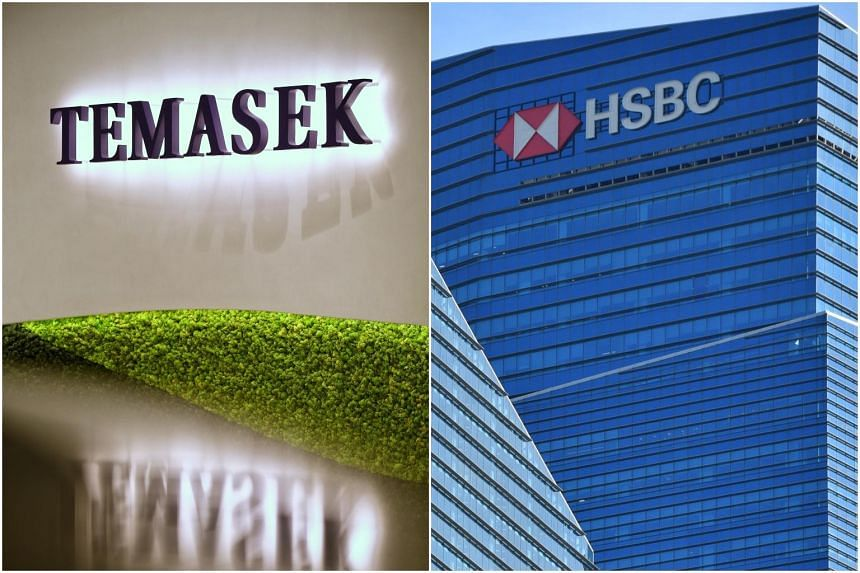 Temasek and HSBC said a portion of the loan portfolio will target marginally bankable, sustainable infrastructure projects.