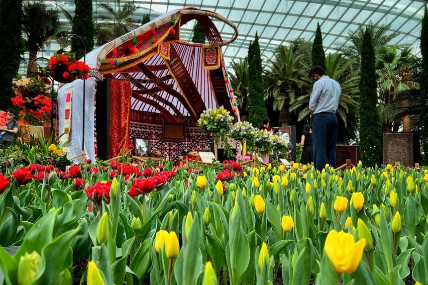 The annual display of tulips at Gardens by the Bay is back after a year.