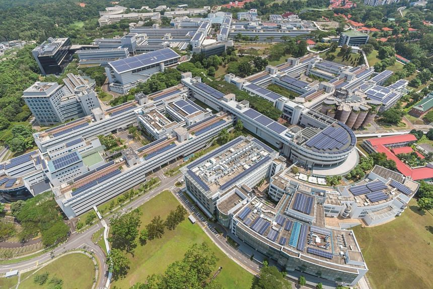 A new NTU Sustainability Office will be established to coordinate and drive its sustainability efforts in an all-of-campus way.