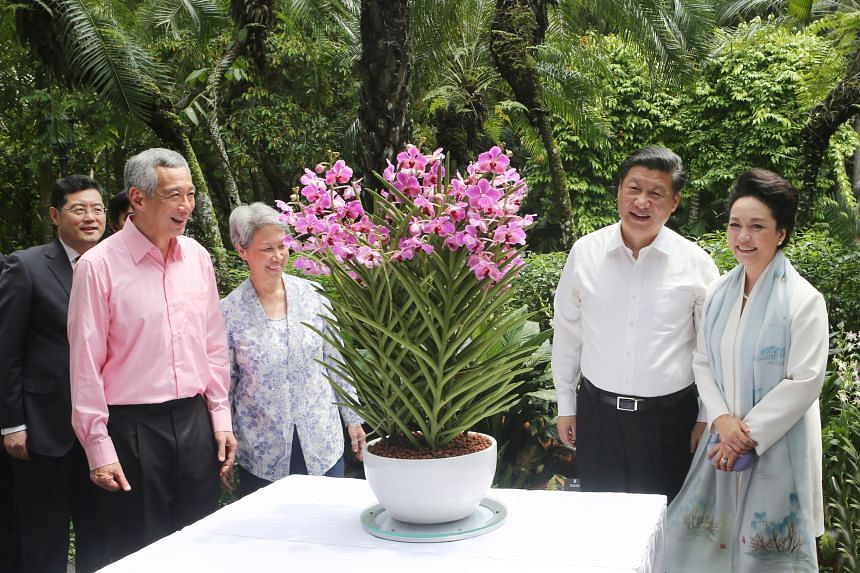 (From left) Singapore Prime Minister Lee Hsien Loong, his wife Ho Ching, Chinese President Xi Jinping and China's First Lady Peng Liyuan at an orchid-naming ceremony at the Singapore Botanic Gardens on Nov 7, 2015.