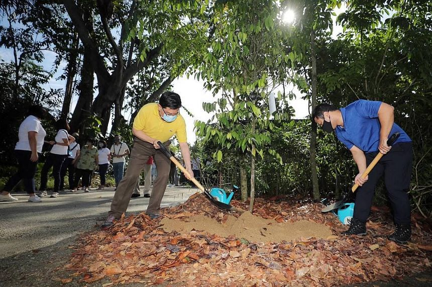 Mr Heng Swee Keat (left) and Mr Desmond Lee planting a cengal tree in the Gallop Extension.