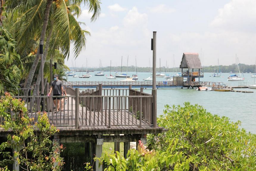 Part of the Changi Point Boardwalk.