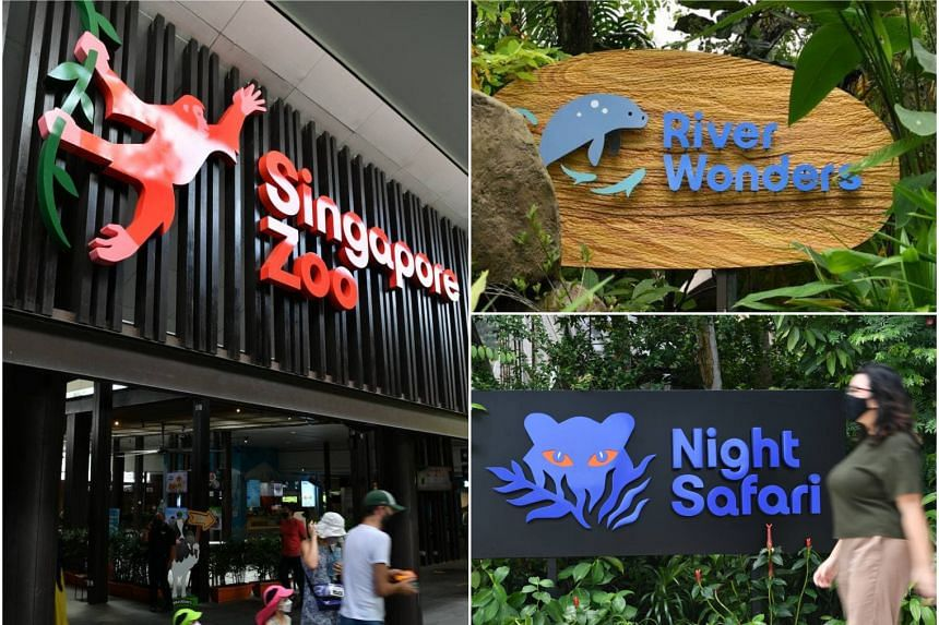 The River Safari will be renamed the River Wonders, while the Singapore Zoo and the Night Safari will retain their names.