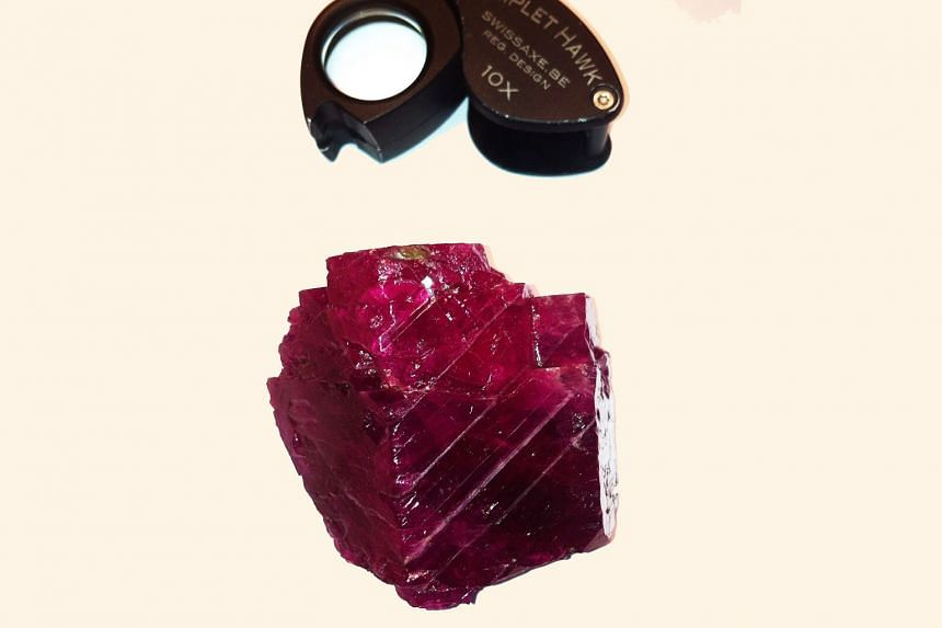 A rare 950-carat Burmese ruby, considered one of the largest of its kind, is on display at Singapore International Jewelry Expo 2015.