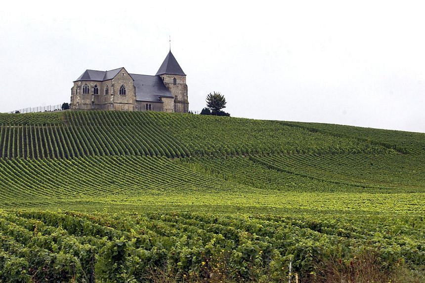 Champagne hillsides, houses and cellars, Europe News & Top Stories ...