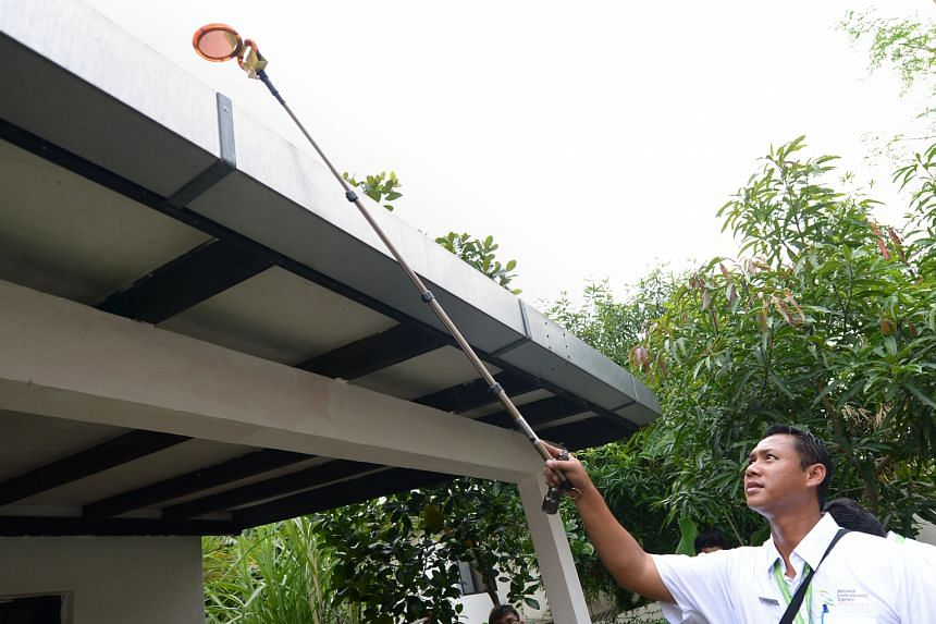 An NEA officer checking the roof of a house for mosquito-breeding sites. Vector control remains a key strategy in the fight against dengue.