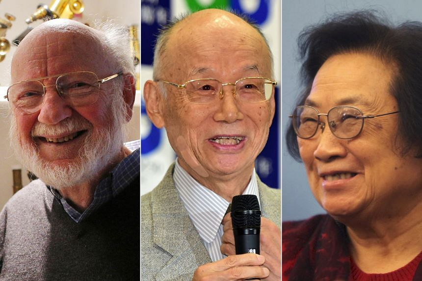 (From far left) Irish-born Dr William Campbell and Japan's Dr Satoshi Omura won half of the prize for discovering avermectin, a derivative of which has been used to treat parasitic infections such as river blindness; China's Dr Tu Youyou won the othe