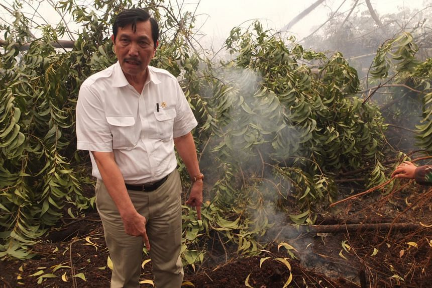 Coordinating Minister for Political, Legal and Security Affairs Luhut Pandjaitan at peatland that was still producing smoke from the fire underneath.
