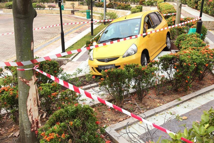 A car hurtled down a slope, grazed a tree and crashed into a bench at a park near Tampines Street 21 on Saturday. Chinese daily Lianhe Wanbao said a man in his 70s, who was driving home with his wife, lost control of the car after mistakenly stepping
