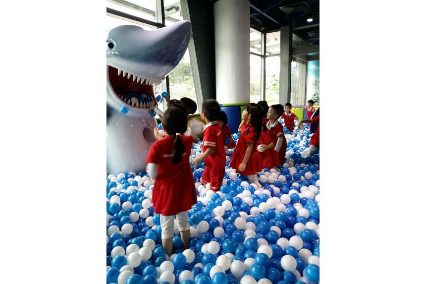 Children from pre-school chain MindChamps were among the first to check out the Shark Ball Pool and other features at Pororo Park Singapore, which opened officially yesterday. The park, a 1,000 sq m indoor playground in Marina Square, is themed after