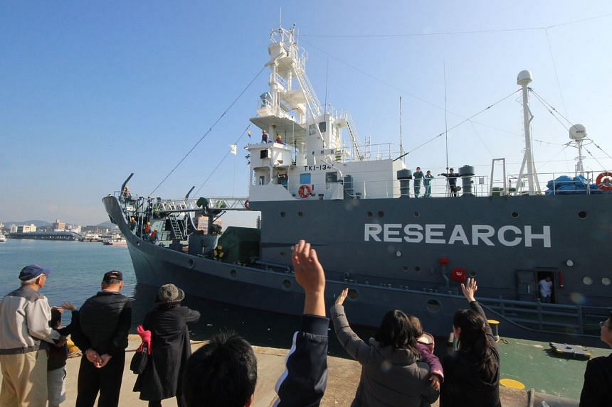 A Japanese whaling ship leaving the port of Shimonoseki in Yamaguchi prefecture, western Japan, for the Antarctic. Japan maintains that research surveys are needed for information on how whales live.