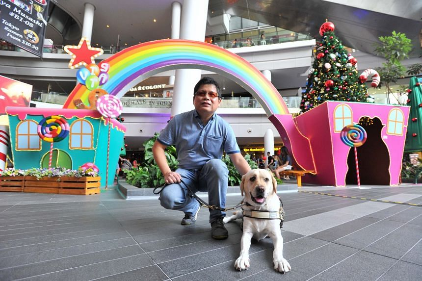 Financial services manager Dennis Sim with his guide dog Melba at The Star Vista, a guide dog-friendly mall. There has been a 50 per cent increase in the number of such places despite there being only seven guide dog users in Singapore.