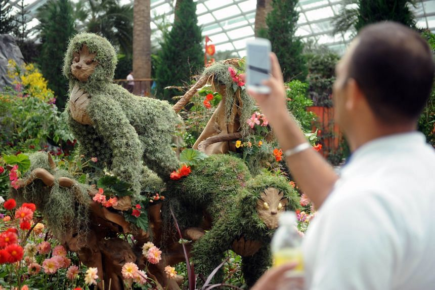 Monkey-shaped topiaries at the display are made of airplants and dried leaves of the Breadfruit flowering tree.