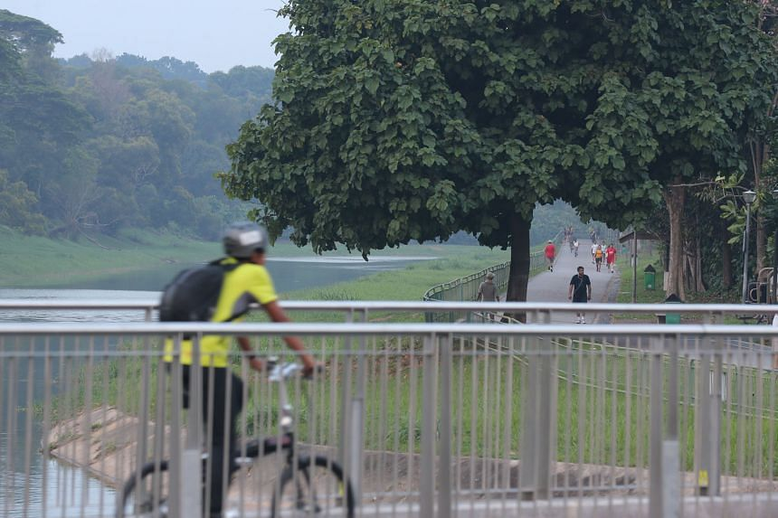 A speed limit in parks and park connectors for cyclists is part of several measures being considered by an advisory panel.