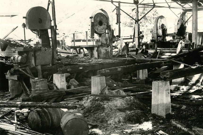 While business was good, it was not always smooth sailing for Hiap Chuan Joo. In October 1962, the sawmill factory was set ablaze (the post-blaze scene above). About $300,000 worth of machinery and timber were destroyed.