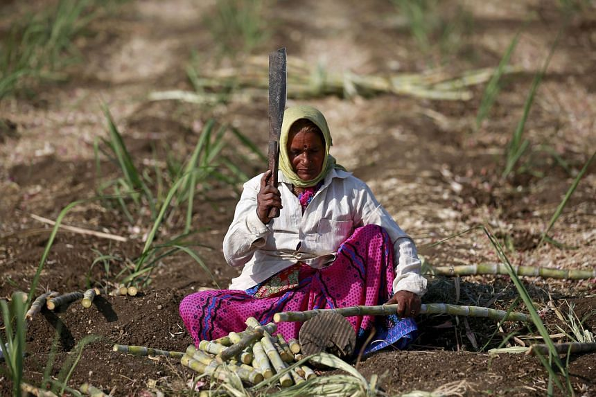 Back-to-back droughts, the lack of long-term investment in agriculture and increasing demands from a growing population are undermining India's bid to be self-sufficient in food.