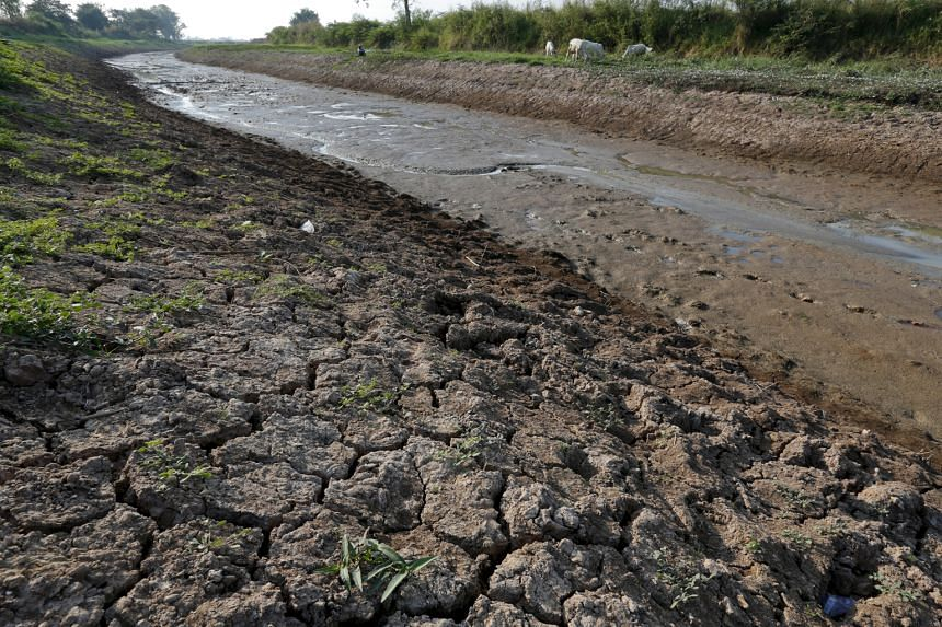A dry canal in Nakhonsawan province, north of Bangkok. Thailand expects to extract up to 47 million cu m of water from the Mekong river over the next three months to irrigate its farms inland.