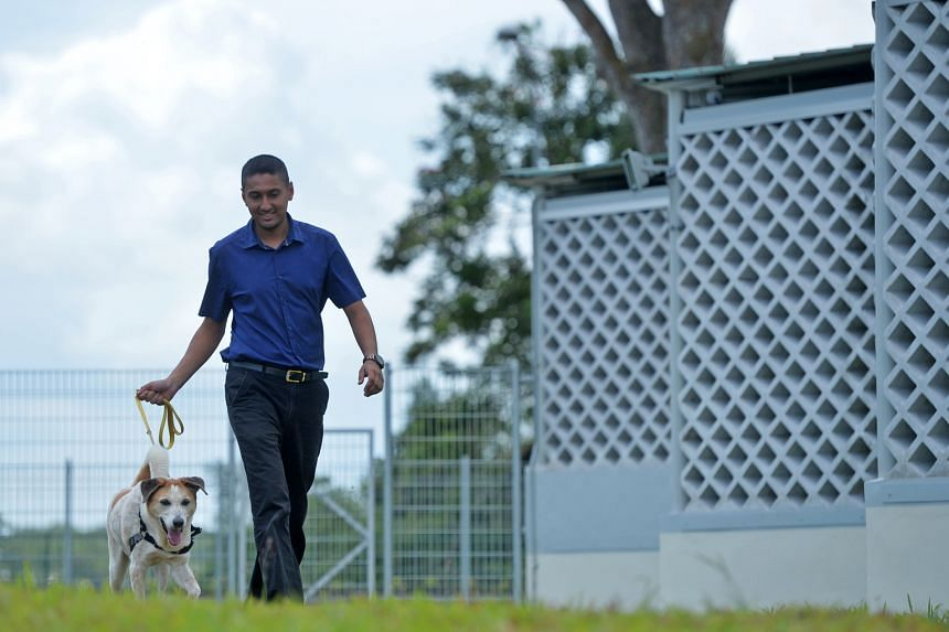 As a child, Dr Gill would take home all kinds of stray animals, to his parents' annoyance. Now, as the SPCA's new acting executive director, he is focused on helping Singapore become a trendsetter in animal welfare.