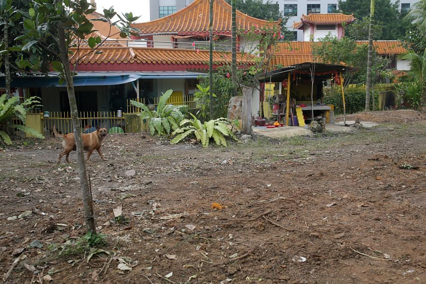 April 8: The vegetation around the temple has been cleared. The HDB is also working with the temple operator to remove unauthorised altars outside the temple.