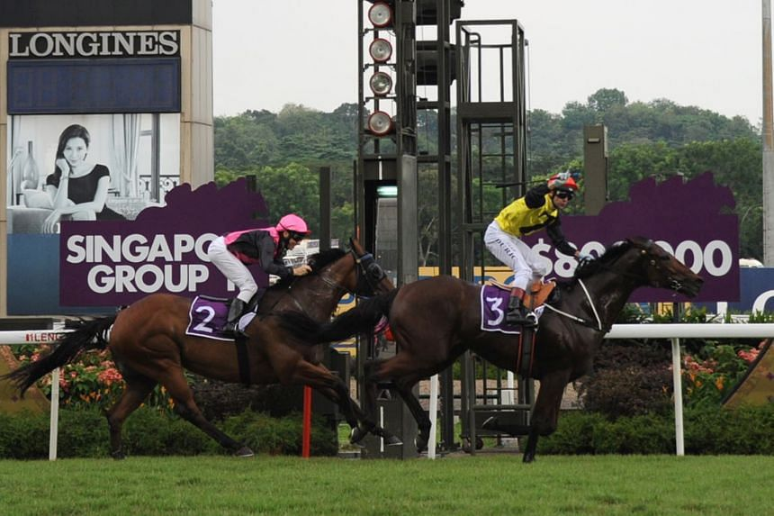 Jockey Vlad Duric steered Zac Spirit (3) to victory in yesterday's Lion City Cup at the Singapore Turf Club. The six-year-old Australian-bred gelding clocked 1min 8.45sec to finish a length clear of Emperor Max (Danny Beasley) while Super Winner (Eli
