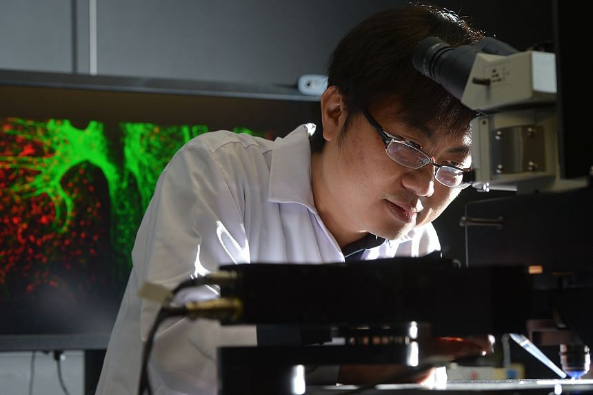 Dr Ng Lai Guan, principal investigator at the Singapore Immunology Network (A*Star), in his laboratory, with a coloured image of a bone marrow niche behind him. He uses the latest scientific imaging technologies to study how immune cells behave in th