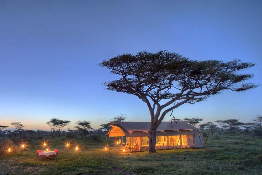 A luxury campsite in the Serengeti with &Beyond.