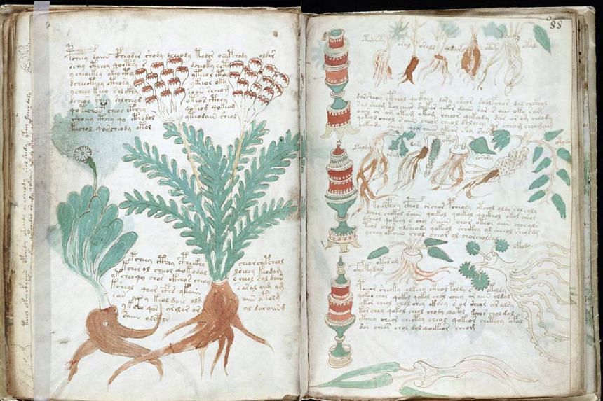 The Voynich Manuscript contains elegant writing and drawings of strange plants.