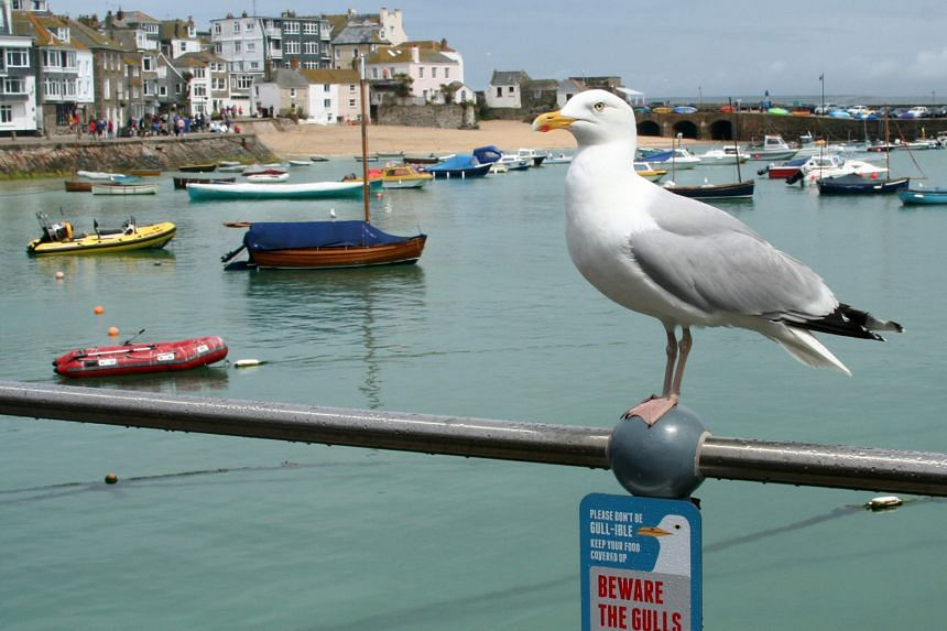 St Ives, a popular seaside resort in south-west England, could see a tourist boom as a weak pound prompts more Britons to opt for a holiday at home instead of going abroad.