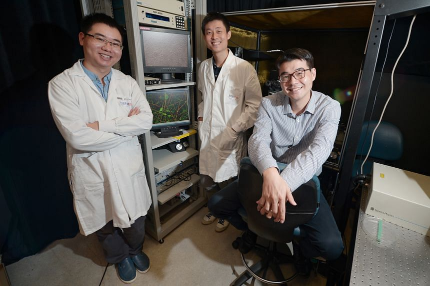 The scientists who came up with a faster way to produce functional neurons are (from left) Mr Yuan Qiang, NUS Graduate School PhD student, Dr Alfred Sun, research fellow at the National Neuroscience Institute and A*Star's Genome Institute of Singapor