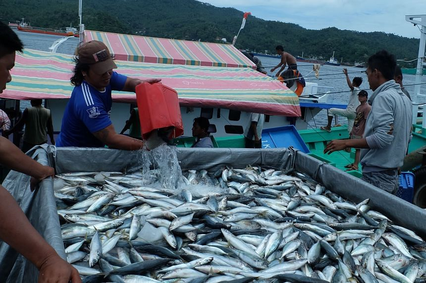 Small-time fishermen in Bitung, whose small boats could not compete with the larger foreign vessels, including those used by poachers, have seen their catch increase and even double.