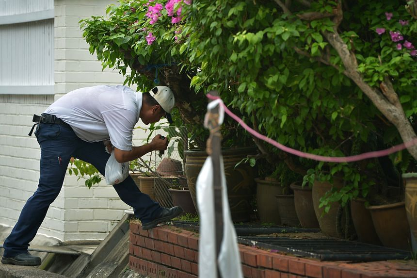 A National Environment Agency officer checking for possible mosquito-breeding sites at the Elite Terrace estate in Siglap on Sept 8. Sales of anti-mozzie products have slowed but are still higher than before the outbreak here.
