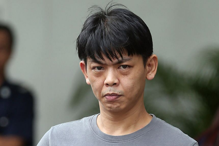 "The prosecution said Alan Chiam Choon San used ""excessive"" force in kicking and punching his pet husky last May."