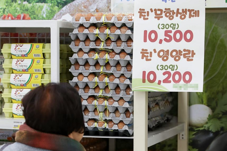 The South Korean government has removed import tariffs on eggs to resolve a supply shortage. More than 26 million birds have been culled in the nation's most serious bird flu outbreak.