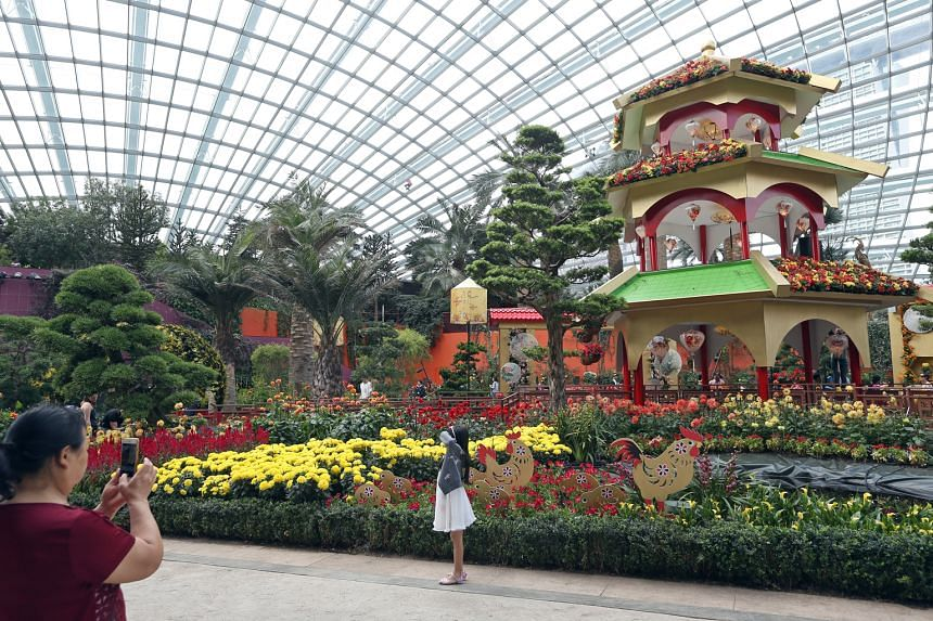 The begonia hybrid (above) and dahlias (right) at the Dahlia Dreams show. A three-tiered pagoda (above) complements the show's Chinese garden theme.