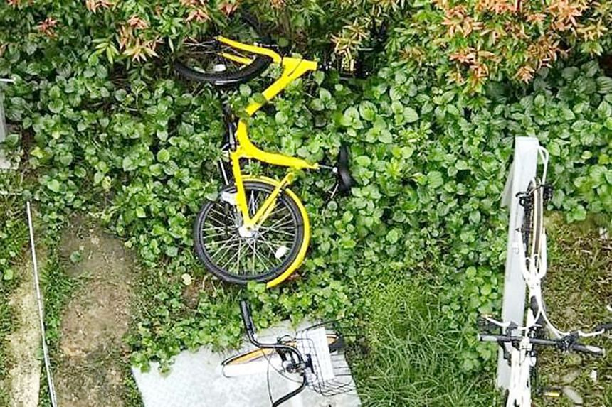 An ofo bike that was left on a grass verge. The absence of features such as GPS tracking and QR code-enabled smart locks have led to ofo bicycles, in particular, being prone to abuse.