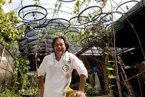 Discarded bicycle wheels are put to good use by the farm in Ground-Up Initiative, which has grown from strength to strength since Mr Tay Lai Hock started it six years ago.