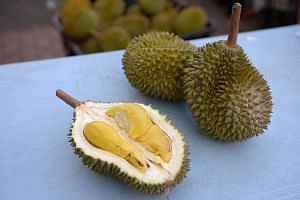 Some facts: Durians are cholesterol-free, but they have a high sugar content. Their high fibre and carbohydrate content may also cause heartburn and bloatedness, made worse if consumed with alcohol.
