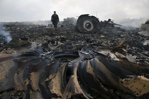 An Emergencies Ministry member walks at a site of a Malaysia Airlines Boeing 777 plane crash near the settlement of Grabovo in the Donetsk region, on July 17, 2014.