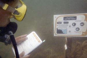 A diver reading a signboard along the Deep Dive Trail at the Sisters' Islands Marine Park.