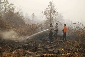 Indonesian police officers and a volunteer try to extinguish a fire in a peatland in Rimbo Long, Kampar, Riau province, Indonesia, on Sept 8, 2015.