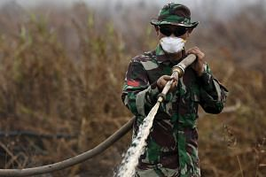 An Indonesian soldier extinguishes the fire at a palm oil plantation at the Pampangan district in Ogan Komering Ilir, Indonesia on Sept 13, 2015.
